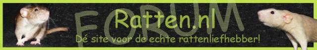 Ratten.nl forum
